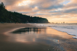 Third Beach, Olympic Peninsula, WA